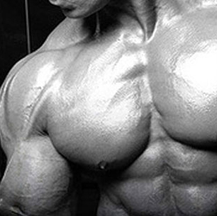 Male Gain Size Daily Macro Plan With Supplements
