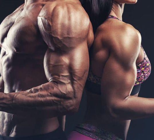 Female Gain Muscle Macro Plan With Supplement Guide